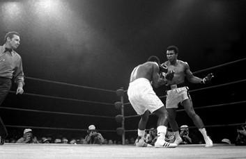 Ali Comeback